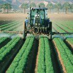 Möglichst natürlich! Warum muss man sich für Bio-Produkte rechtfertigen?