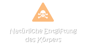 MEDIA_Darmliebe.de_DARMGESUNDHEIT_Entgiftung
