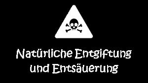 MEDIA_Darmliebe.de_ERNÄHRUNGSBERATUNG_Entgiftung_weiß