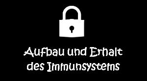 MEDIA_Darmliebe.de_ERNÄHRUNGSBERATUNG_Immunsystem_weiß