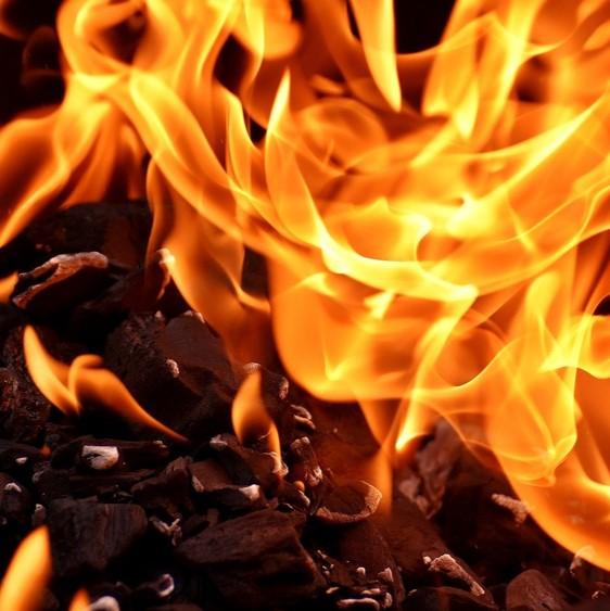 Darmliebe Ayurveda Feuer Umwandlung