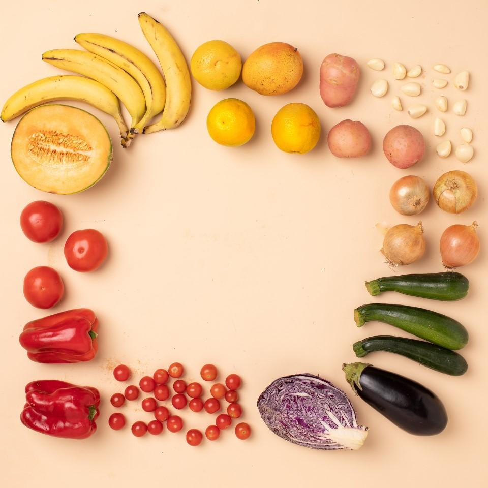 Darmliebe Ganzheitliche Ernährungsberatung Parasitentest