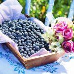 Superfood für die Gesundheit – Eine Erfindung der Industrie?